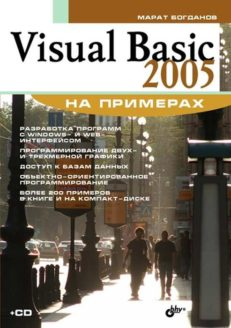 Visual Basic 2005 на примерах